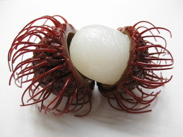 rambutan frutta esotica
