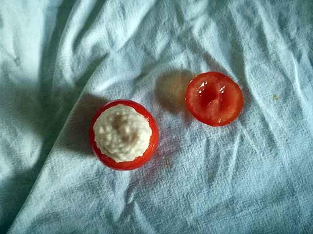pomodorini farciti